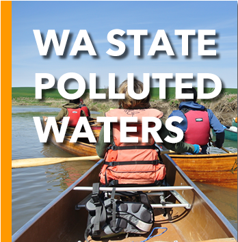 Washington State Polluted Waters